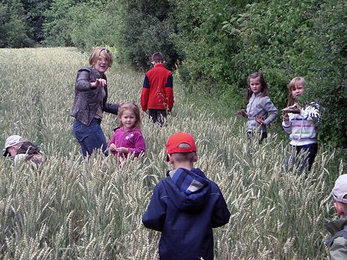 500 Kindergartenkinder suchen Kraeuter