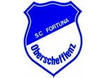 Logoscoberschefflenz