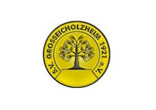 Logosvgrosseicholzheim  1
