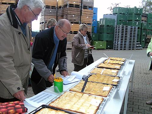 Apfelkuchen getestet