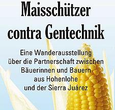 Titelfoto Maisschuetzer