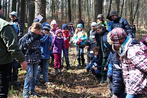 DHBW entdeckt den Wald