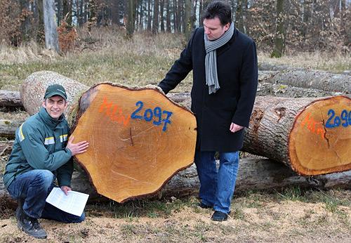 Holz Elztal