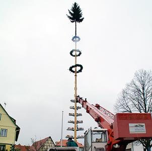 Maibaum Baum