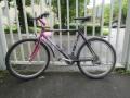 Fahrrad-ohne-Eigentuemer.jpg