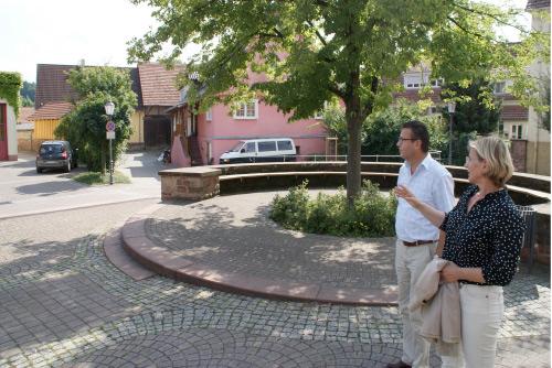 Hauk in Algasterhausen