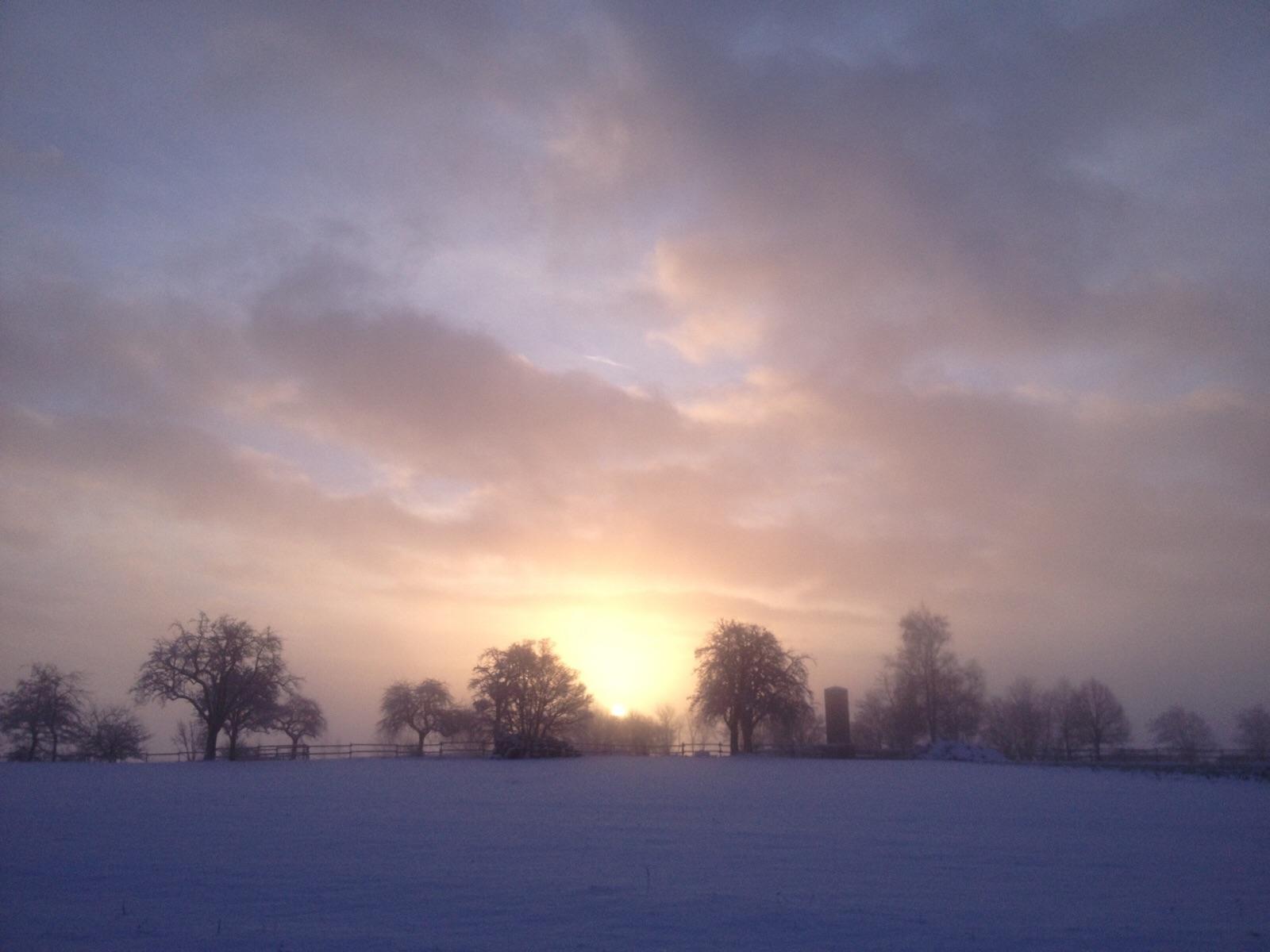 Waldbrunn: Wintersportbericht 19.01.2016 thumbnail