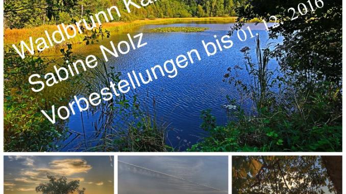 Waldbrunn kalender
