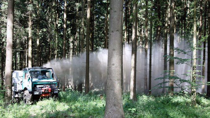 Waldkalkung