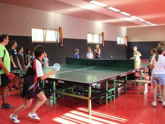 Tischtennis Ferienprogramm Seckach