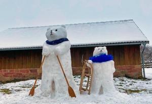 SchneeBären aus Mülben-beim-Wintersport